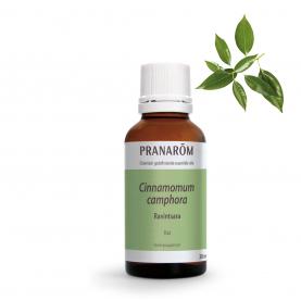 Ravintsara - 30 ml | Pranarôm