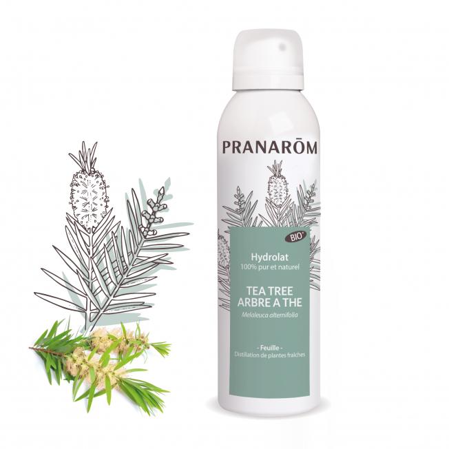 Hydrolat Tea Tree - Arbre à thé - 150 ml   Pranarôm