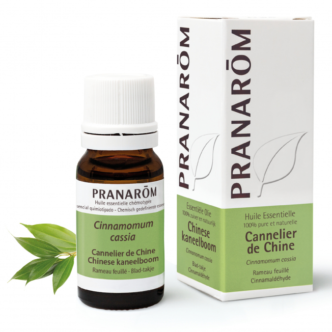 Chinese kaneelboom - 10 ml | Pranarôm