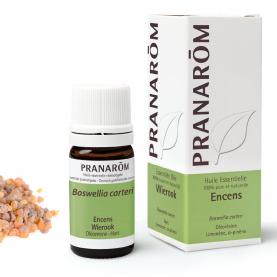 Encens - 5 ml   Pranarôm