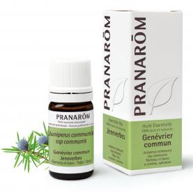 Genévrier commun - 5 ml | Pranarôm