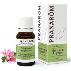 Géranium d'Egypte - 10 ml | Pranarôm