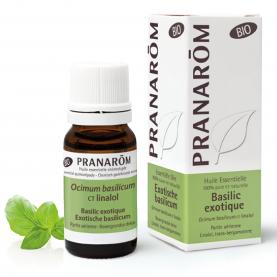 Basilic exotique - CT linalol - 10 ml   Pranarôm