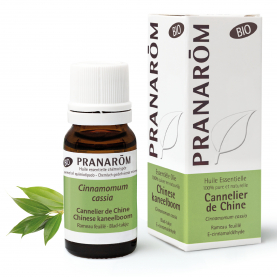 Chinese kaneelboom - 10 ml