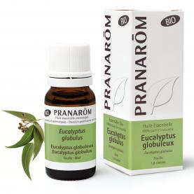 Eucalyptus globulus - 10 ml | Pranarôm