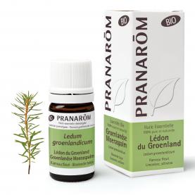 Groenlandse Moeraspalm - 5 ml | Pranarôm