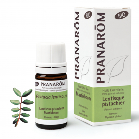 Mastikboom - 5 ml | Pranarôm