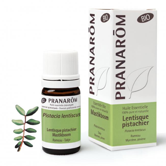 Mastikboom - 5 ml   Pranarôm