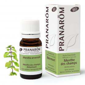Akkermunt - 10 ml | Pranarôm