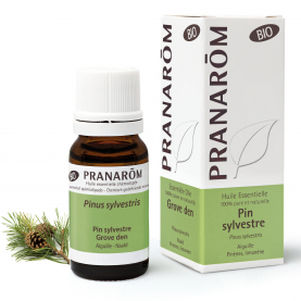 Grove den - 10 ml | Pranarôm