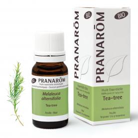 Tea-tree - 10 ml | Pranarôm