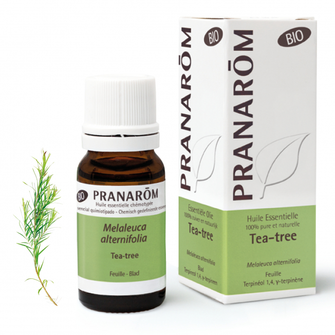Tea-tree - 10 ml | Pranarôm