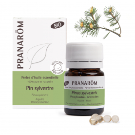Pin sylvestre - 60 Perles | Pranarôm