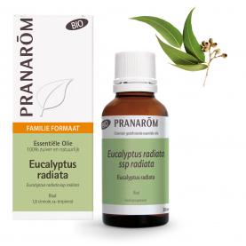 Eucalyptus radiata - 30 ml | Pranarôm
