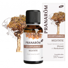 Meditatie - 30 ml | Pranarôm